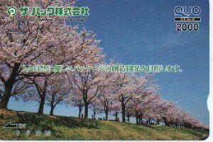 クオカード 2000円分 Tポイント消化に 普通郵便 ミニレター対応可