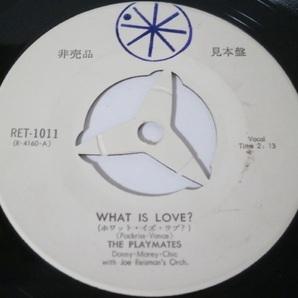 見本盤白ラベル The Playmates - What Is Love? / I Am 非売品プロモ RET-1011 プレイメイツ