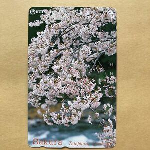 【使用済】 テレカ 桜