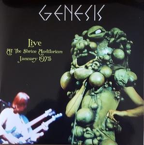Genesis - Live At The Shrine Auditorium January 1975 500枚限定二枚組アナログ・レコード