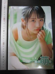 Hakumoe Yahagi MOE clear file unused article