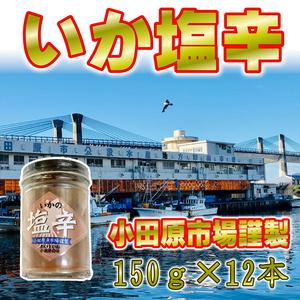 いかの塩辛 150g×12個【小田原魚市場謹製】小田原のおいしい塩辛・お土産としても大人気! ④