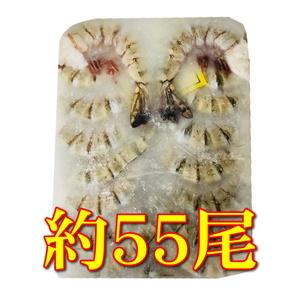 ブラックタイガー 海老 ・殻付き 0.9㎏ 約55尾【鮮度維持ブロック凍結・21/25】エビチリ・天ぷら・フライ・BBQにいかがですか。⑥