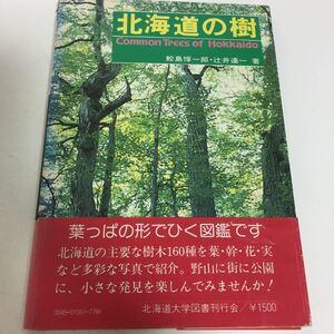 北海道の樹 鮫島惇一郎 辻井達一著 ハイキングに登山に野外観察に必携の花案内 葉っぱの形でひく図鑑です 北海道大学図書刊行会