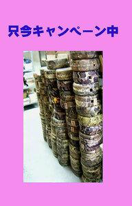 (送料無料)19.800円 沖縄三線専用蛇皮強化(二重張)型チーガ二個セット 左御紋付