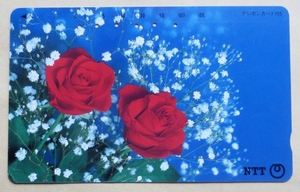 使用済・テレカ・105度 赤いバラ(紅薔薇)、NTT発行・標準品、穴6孔 裏面・刷り跡あり 経年不明 薔薇ファン向けに 送料63円・郵便書簡