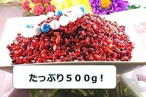 【送料無料】たっぷり 500g さざれ 小サイズ 赤珊瑚 サンゴ コーラル パワーストーン 天然石 ブレスレット 浄化用 さざれ石 チップ ※5