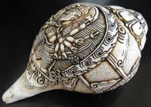 ◆チベット密教法具 法螺貝(シャンカ)ーガネーシャB