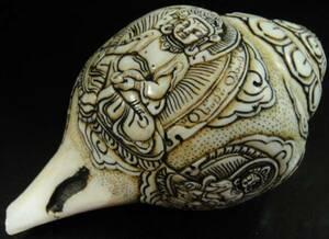 ◆チベット密教法具 法螺貝(シャンカ)ジャンバラ(宝蔵神)