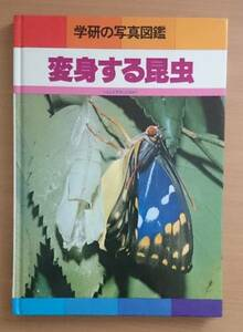 学研の写真図鑑 変身する昆虫