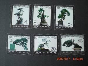 盆栽の切手‐アキニレ他 6種完 未使用 1981年 中共・新中国 T61 VF・NH