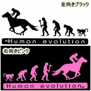 人類の進化 15cm【競馬・乗馬編】ステッカー1 馬券J1ダービー