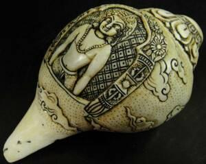 ◆チベット密教法具 法螺貝(シャンカ)・ヴィルーパ