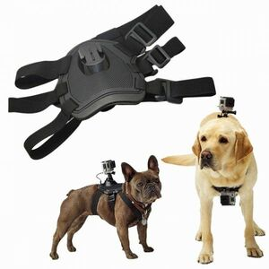 GoPro for dok Harness dog for chest mount * pet eyes line photographing