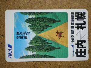 hi/DC1・航空 全日空 ANA 庄内-札幌 テレカ