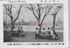 複製復刻 絵葉書/古写真 東京 上野公園の花見 明治期