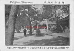 複製復刻 絵葉書/古写真 東京 向島牛の御前 明治期