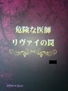 進撃の巨人同人誌★リヴァエレ長編小説★Berry Garden「危険な医師リ~」