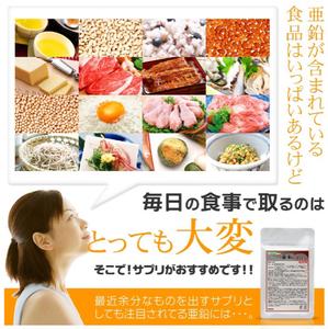 送料無料 亜鉛 約1ヵ月分 活力 バイタリティ 美容ケア 健康食品 サプリメント