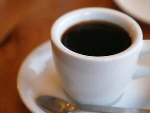 焙煎したて ブラジル ブレンド 500g コーヒー コーヒー豆