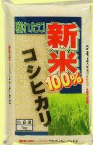 新米 令和3年産 愛知 コシヒカリ 白米30kgから白米24kgに変更 【送料無料・一等品質】