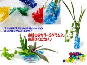●マジッククリスタルボール【MIX】5gハイドロカルチャー!観葉植物 花の栽培に水につけるとぷよぷよボールに変身ジェリーボール